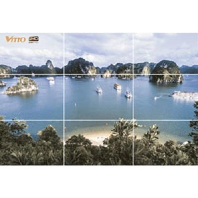 Gạch tranh Vitto 4.C9045.09