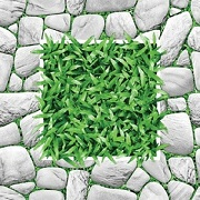 gạch cỏ 2