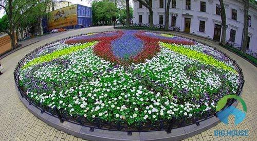 mẫu gạch ốp bồn hoa