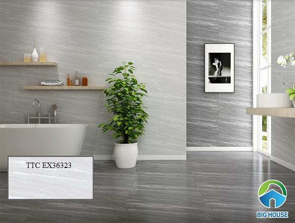 gạch ốp phòng tắm ttc